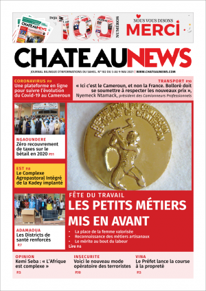 medaille travail, chateaunews